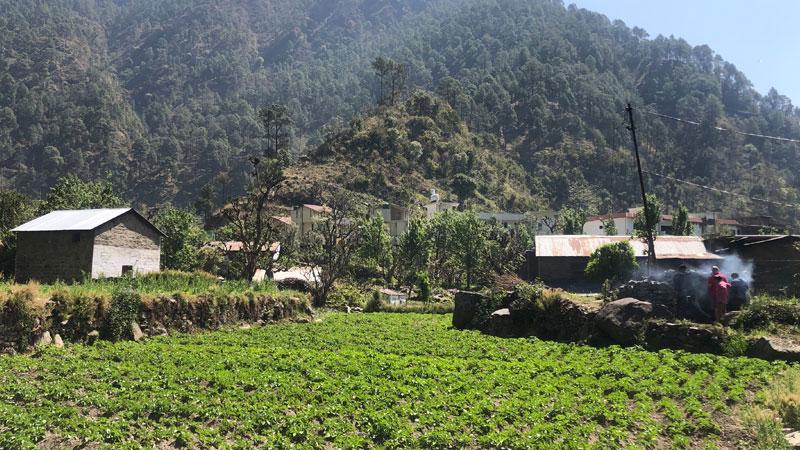 chanfi-village-walk-featured